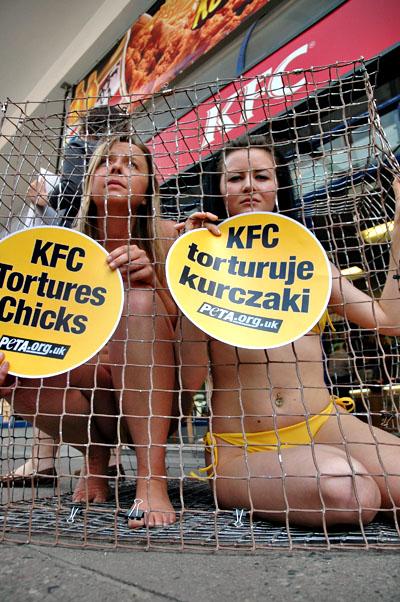 protest_kfc_wp_02.jpg